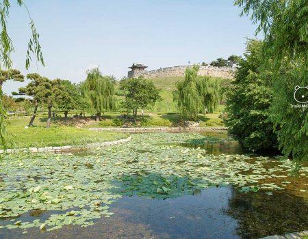 UNESCO World Heritage: Suwon Hwaseong Fortress