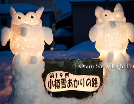 Otaru Snow Light Path 2017