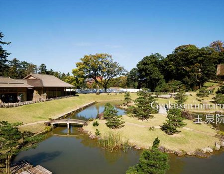 在加賀藩主的庭園品茶賞景
